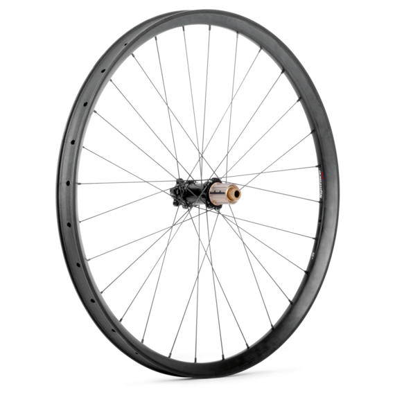 C33i Straight Carbon Rear Wheel 10S M40